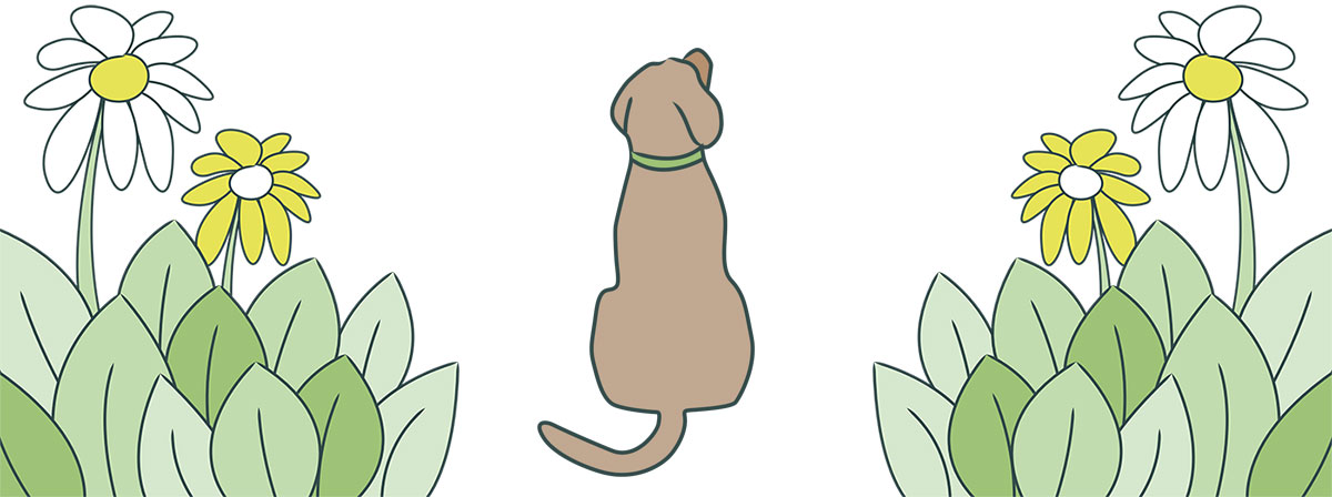 Dog Hair Day Banner