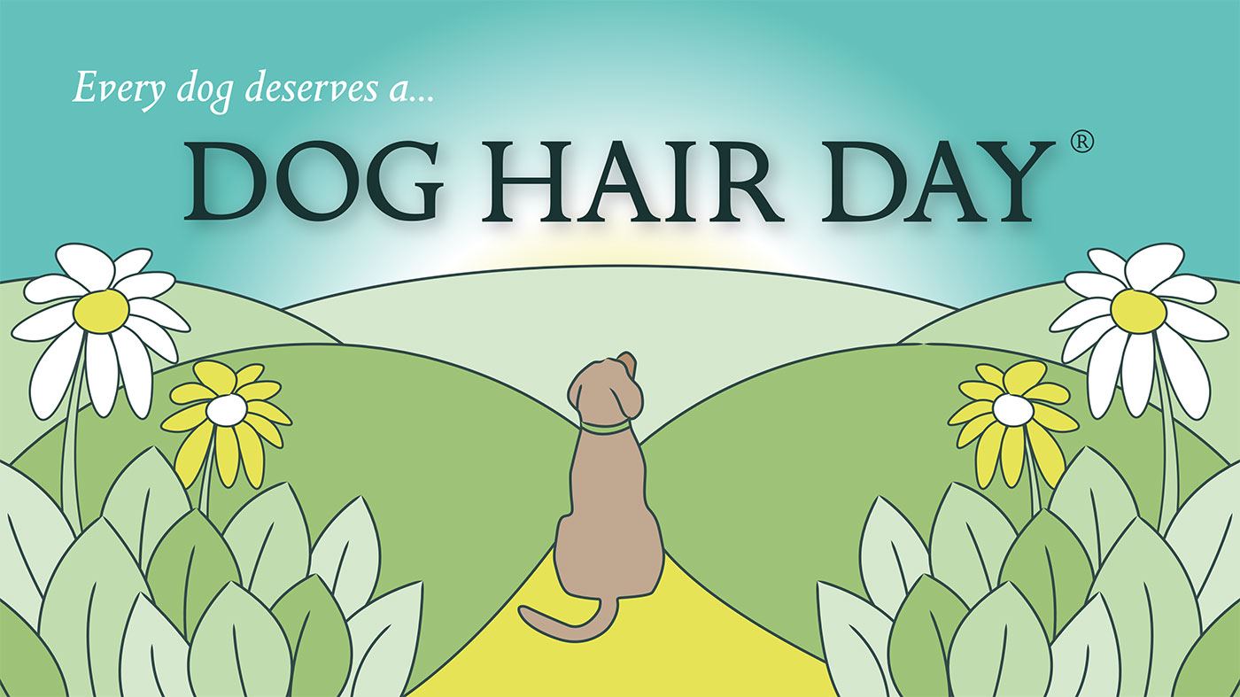 Dog Hair Day