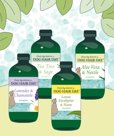 4 bottles of Dog Hair Day dog shampoo