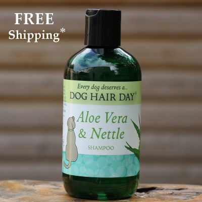 Dog Hair Day Aloe Vera & Nettle dog shampoo
