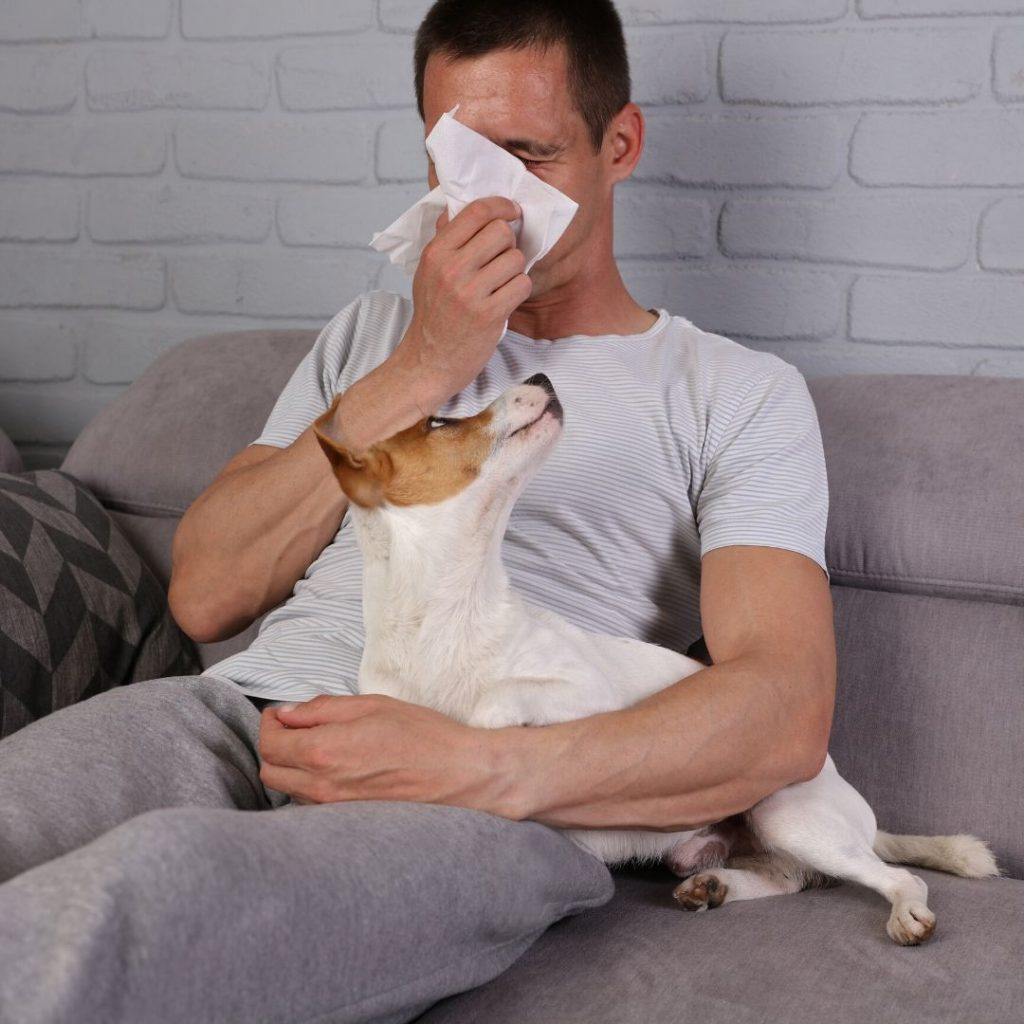 man sneezing from allergy and his dog